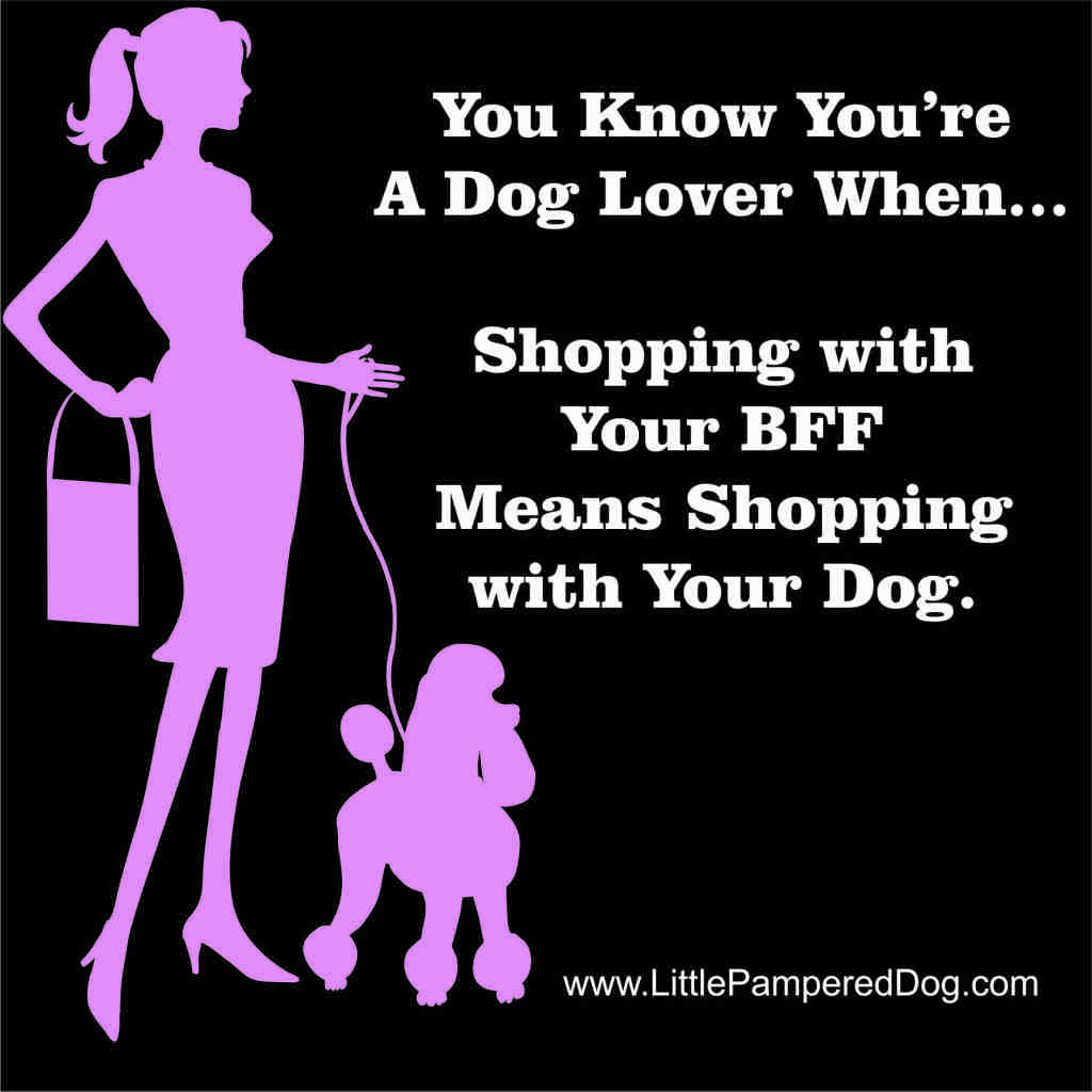 Shopping with your BFF Dog