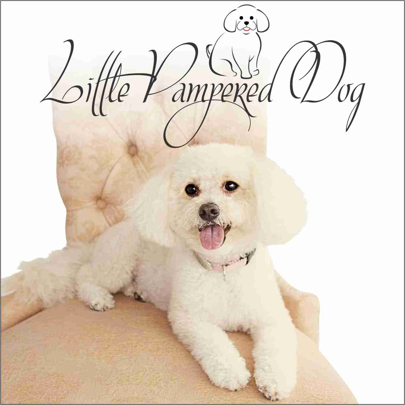 Little Pampered Dog Podcast