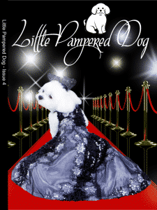 Little Pampered Dog - Issue 4