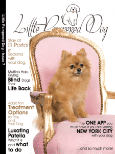Little Pampered Dog - Issue 7