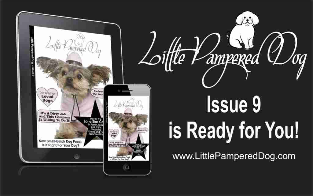 Little Pampered Dog Issue 9