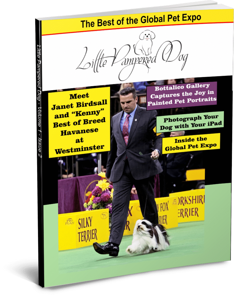 Little Pampered Dog Issue 2