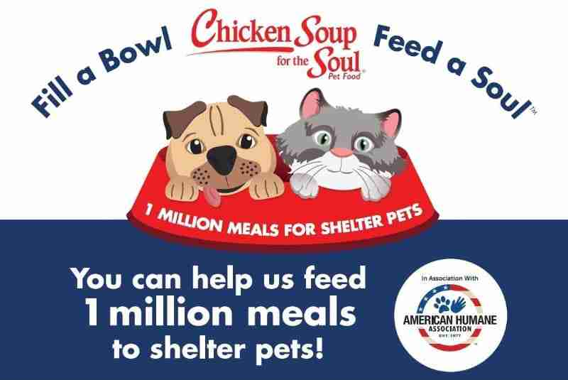 Chicken Soup for the Soul and American Humane are teaming up to provide 1 million meals to shelter pets. Support their efforts! (PRNewsFoto/American Humane Association)