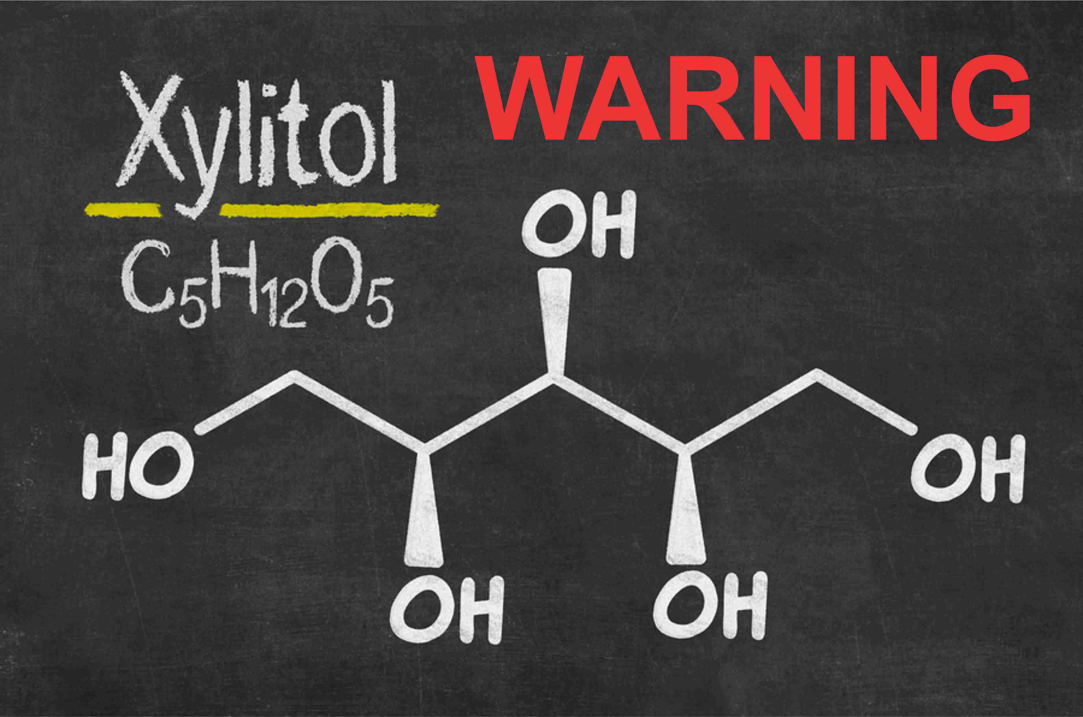 Xylitol Warning